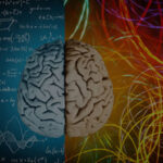 A Whole Brain® Approach to Adherence